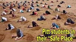 Pitt students