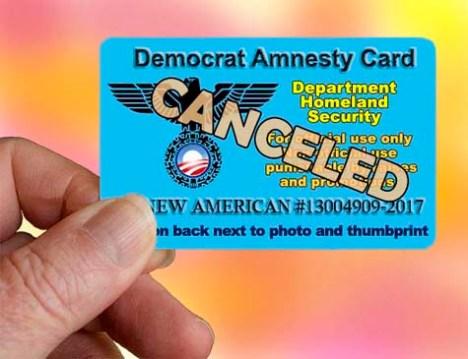 amnesty-card