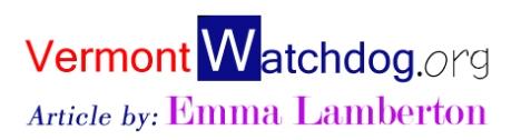 watchdog-logo-em